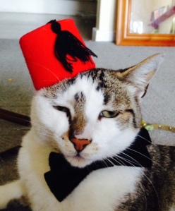 Custom made fez and bow tie by @MarkBucko1 - contact him directly for orders.